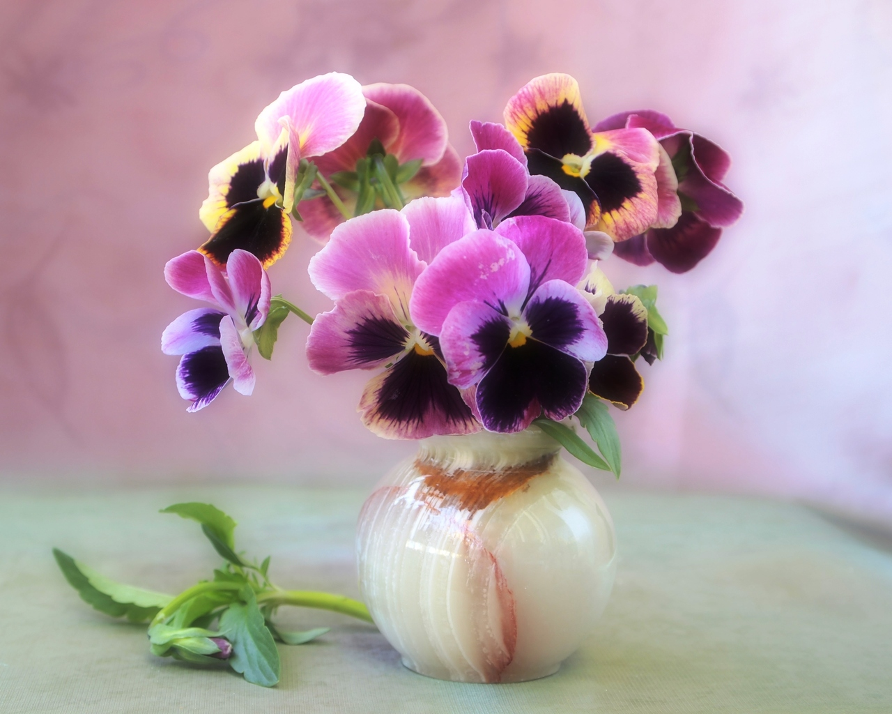 Pansies in Vase