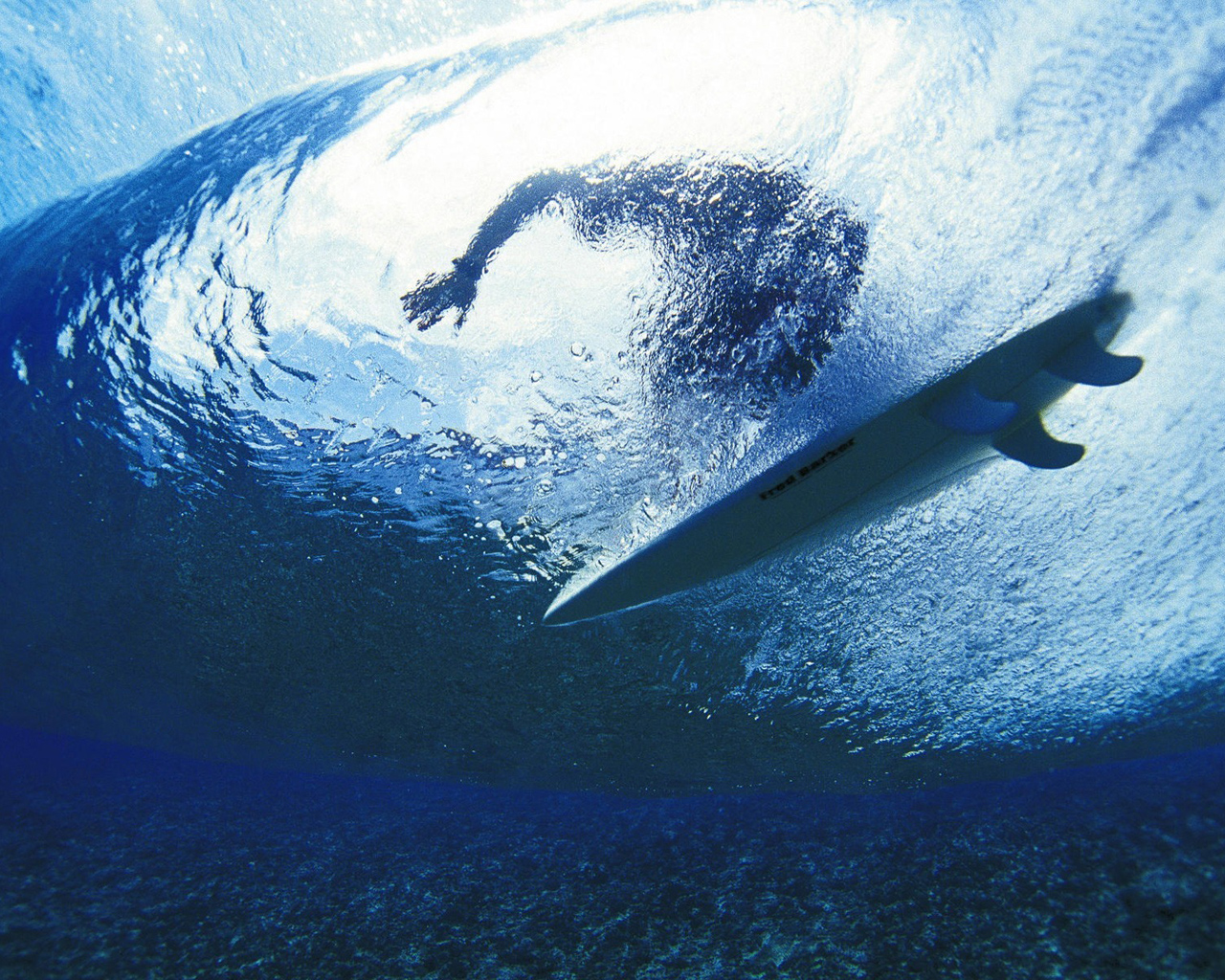 Surfer above