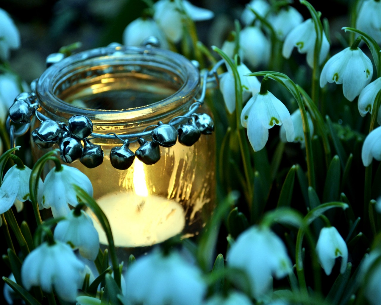 Snowdrops and Candle