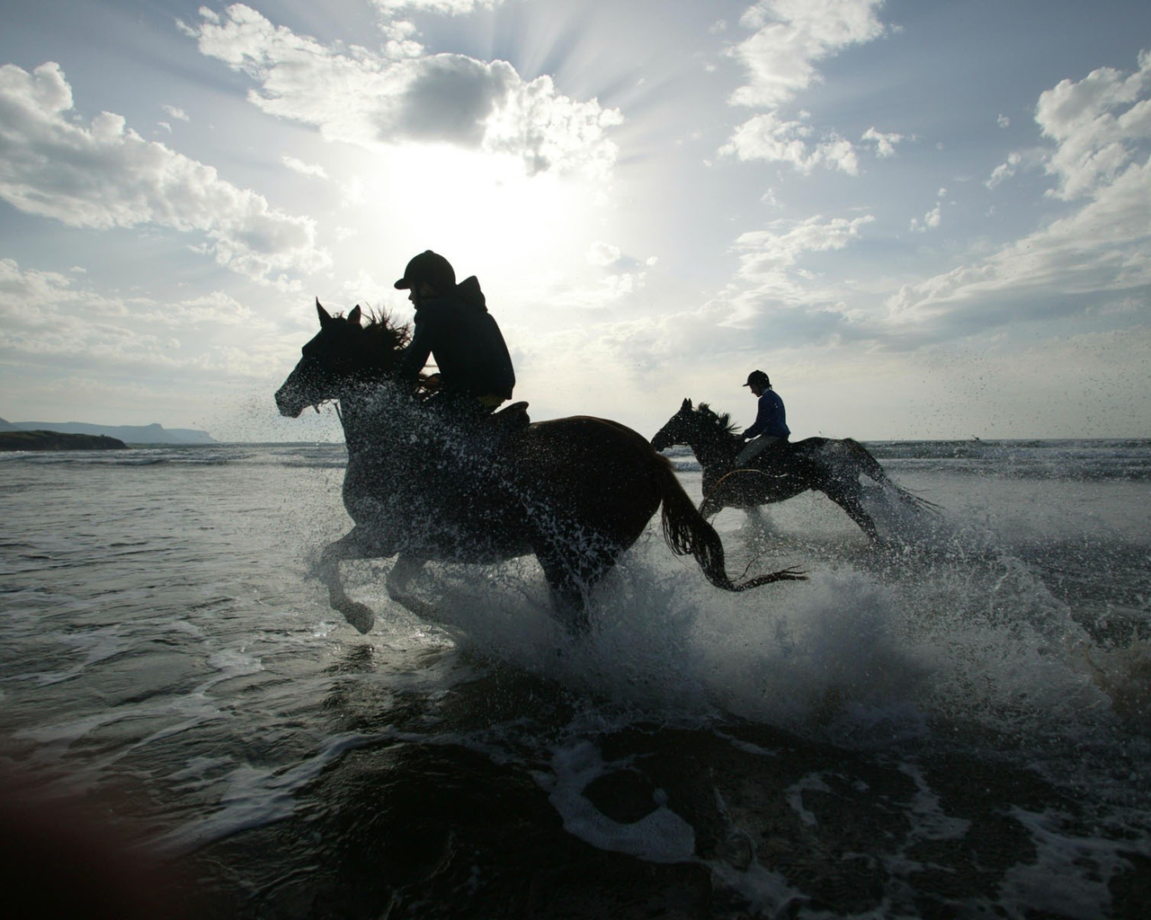 horses-and-water