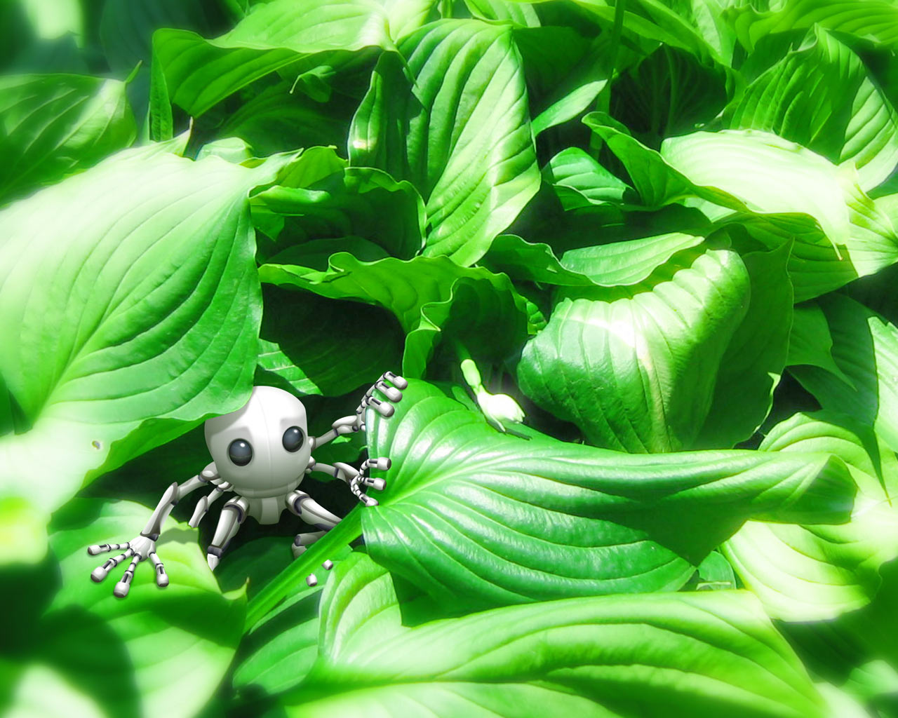 Robot on leaves