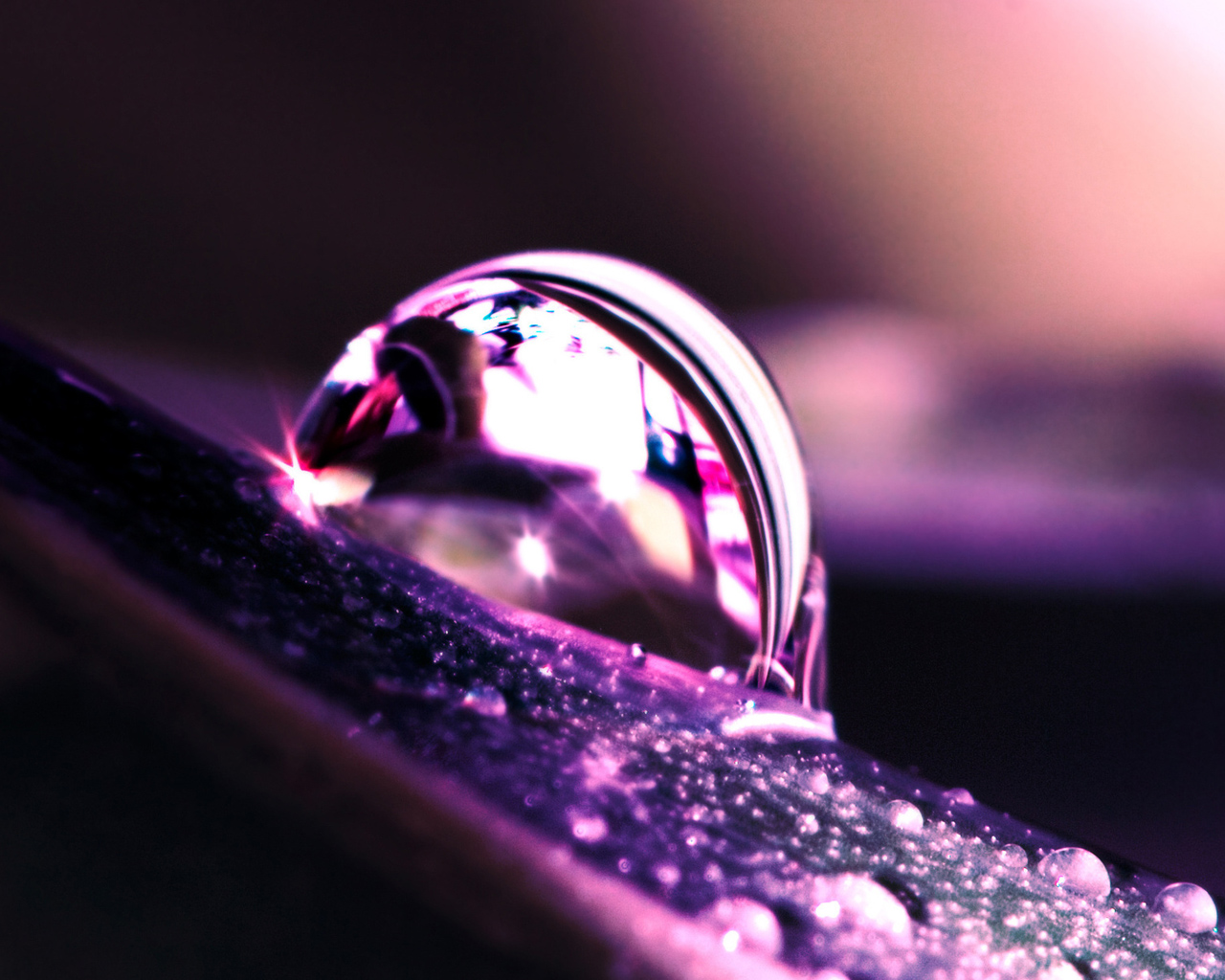 Purple macro water drop