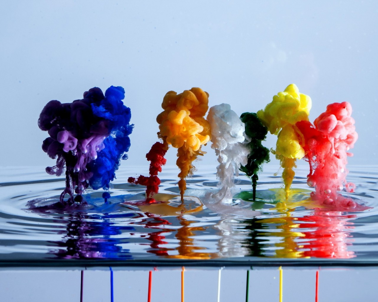 Paints Dropped into Water